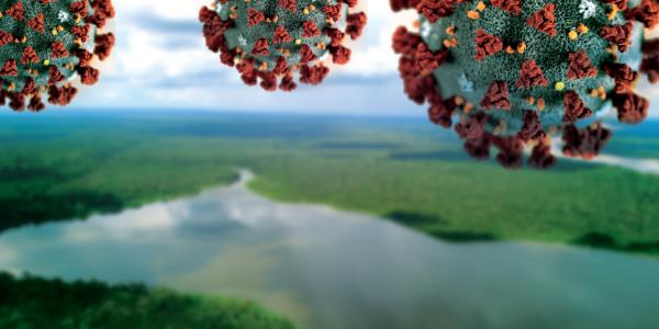 amazonia-coronavirus